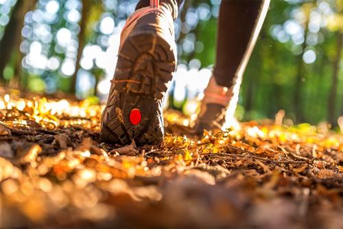 Best San Antonio Trails to Hike This Autumn